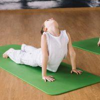 yogacirculo